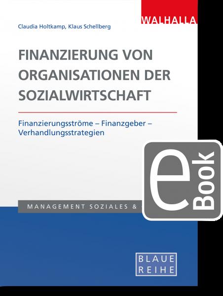 Finanzierung von Organisationen der Sozialwirtschaft