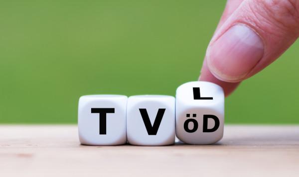 Webinar Überblick über die tariflichen Regelungen (TV-L, TVöD) im Öffentlichen Dienst für Einsteiger