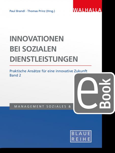 Innovationen bei sozialen Dienstleistungen Band 2